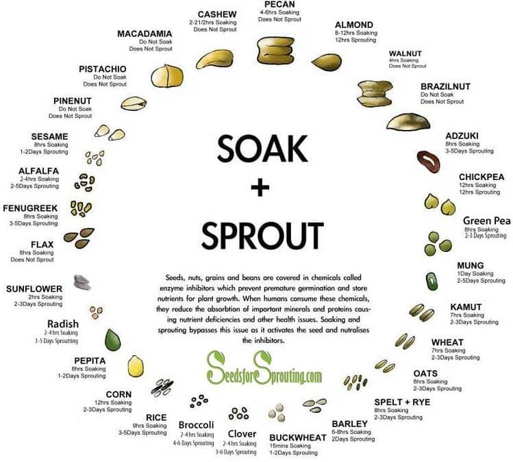 Sprout Seed Soak and Grow Times